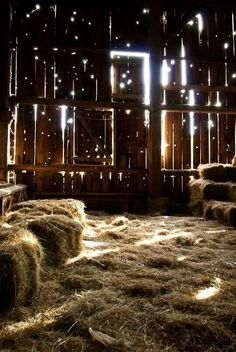 Beautiful barn filled with hay and memories