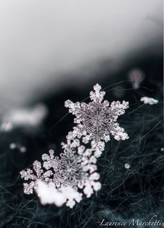 Snowflake 5 by ~Gallynette on deviantART
