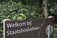 Zelfs De Nederlandse Boswachter Heeft Een Blog