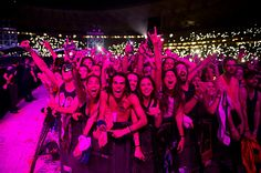 foo fighter concert pics from the audience - Google Search
