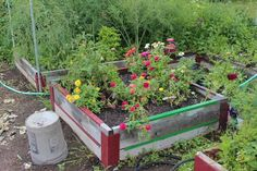 Raised Beds are great for gardens, flowers, herbs, and all your home grown veggies! Check out our raised bed collections at http://www.growitnow.com/   #urbangardening