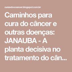 Caminhos para cura do câncer e outras doenças: JANAUBA - A planta decisiva no tratamento do câncer!  Gotas de cura!