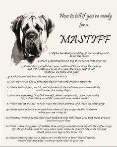 English Mastiff+weight+chart if this is true, then Hera