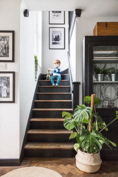 Lover of monotone schemes? : Paired with an otherwise white scheme, a black and dark wood staircase can make a stylish addition to a hallway. Black Staircase, Wood Staircase, Staircase Design, Staircase Ideas, Black And White Stairs, Staircase Painting, Black Painted Stairs, Painted Stair Risers, Staircase Decoration