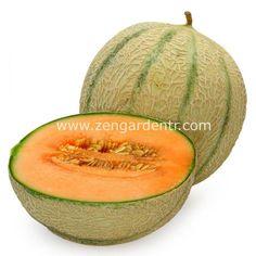 www.zengardentr.com Sekerkupu-kavun-tohumu-geleneksel-honey-rock-melon-seeds,PR-880.html