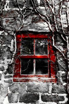 Rosso Grigio - Red Gray