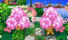 """Wondrill 