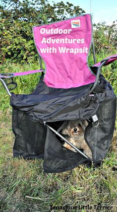 Small Dog Outdoor Adventures with the Wrapsit Crate ~ Tenacious Little Terrier:
