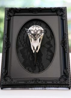 Macabre-Gothic-Victorian-ornate-jewellery-crow-skull-display-picture-taxidermy
