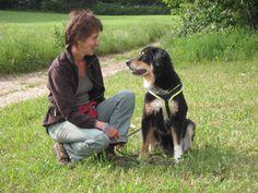 Easy Dogs / Der Knigge bei Hundebegegnungen, Claudia Matten, FRED & OTTO Stadtführer Mittelfranken
