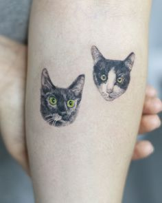 Small cats tattoo color done at CACTUS INK BUCHAREST Small Cat, Bucharest, Cat Tattoo, Color Tattoo, Cactus, Artists, Ink, Tattoos, Animals