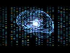 """Im Rahmen von """"Next 5 in 5"""" präsentiert IBM Zukunftstrends, die die Welt verändern. Besonders die beiden Trends """"Mind reading"""" sowie die intelligente Datenanalyse dürften einen erheblichen Einfluss auf Unternehmen haben; zusammen sind damit quasi-intelligente Assistenten möglich, die per Gedanken gesteuert werden."""