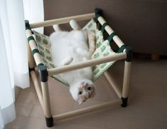 Here's a round-up of DIY cat hammock tutorial videos that will ensure you and . Here's a round-up of DIY cat hammock tutorial videos that will ensure you and your favorite feline can kick back and relax in a hammock together. Diy Cat Hammock, Bedroom Hammock, Diy Cat Tree, Cat Playground, Cat Enclosure, Cat Room, Cat Condo, Pet Furniture, Furniture Cleaning