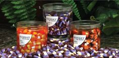 Hanna's at Home Candy Corn Jel Tumblers with votive cup   $8.99 on amazon