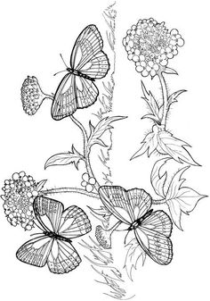 Free printable coloring pages for MOMS to enjoy :-)