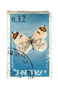 Zegris Eupheme Uarda, Sooty orange tip ( Zegris Eupheme). Art Postal, Postage Stamp Art, Going Postal, Love Stamps, Vintage Stamps, Orient, My Stamp, Stamp Collecting, Mail Art