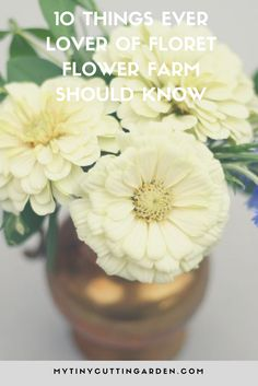 small cutting garden flowers for growing how to grow flowers growing flowers in small garden