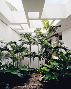 49 Indoor Garden Design Ideas That Relax you is part of Patio interior - When thinking of gardening in a little space some individuals still think about crowding many plants in a little space […]