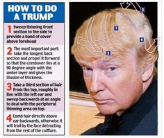 donald trump's hairstyle - Google Search