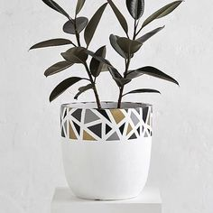 Meet the TERRAZZO RIM POT! Unique in its design, the shapes will all be different in shades of mono, blush and blue. Hope you've stuffed yourselves silly with chocolate this weekend, I know I did! Painted Plant Pots, Painted Flower Pots, Concrete Pots, Concrete Crafts, House Plants Decor, Plant Decor, Pottery Painting, Ceramic Painting, Flower Pot Design
