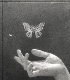 Keep your butterfly before the butter melted - Animals Tiktok Aesthetic Art, Aesthetic Pictures, Black And White Aesthetic, Aesthetic Wallpapers, Picture Wall, Wall Collage, Oeuvre D'art, Art Inspo, Art Reference