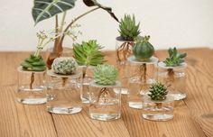25 DIY Test Tube Vase Crafts IdeasThe post 25 DIY Test Tube Vase Crafts Ideas & Page 4 of 25 & LoveIn Home appeared first on Dekoration.
