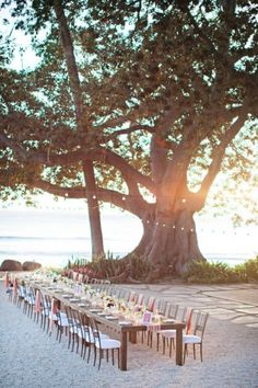 An outdoor wedding with a communal table makes for some pretty amazing photos.