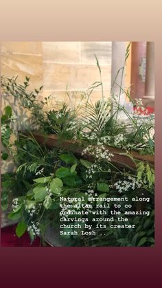 Palms, grasses, wheat, ruscus, cow parsley Cow Parsley, Church Flowers, Grasses, Palms, Carving, Nature, Lawn, Palmas, Naturaleza