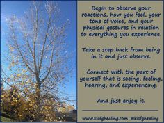 Begin to observe your reactions, how you feel, your tone of voice, and your physical gestures in relation to everything you experience.   Take a step back from being in it and just observe.   Connect with the part of yourself that is seeing, feeling, hearing, and experiencing.  And just enjoy it.