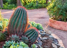 Landscape Solutions | The Home Depot's Garden Club
