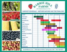 Barrie Hill Farms Harvest Schedule