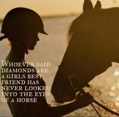 Whoever said diamonds are a girls best friend has never looked into the eyes of a horse.
