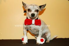 Bow tie Collar slide and Matching Cuffs      Maximo is modeling the Bow tie Collar slide and   Matching Cuffs   I made them red for Valent...