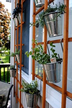 Love this idea. Simple metal buckets with herbs and plants hanging from a trellis.