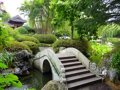 Google Image Result for http://www.wanderingearl.com/wp-content/uploads/2011/02/Chinese-Garden-Sydney-3.jpg