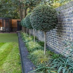 Family garden design in Wandsworth, designed by Philip Wells, Design Box Architecture and constructed by The Garden Builders Backyard Plants, Patio Planters, Backyard Landscaping, Landscape Elements, Landscape Design, Garden Design, Family Garden, Home And Garden, Artificial Putting Green
