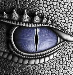 ... inheritance book 4 cover art dragon eye christopher paolini artwork wow