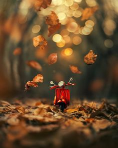 Whimsical and Dreamlike Still Life Photography by Ashraful Arefin photography dreamlike stilllife fineart toyphotography 680958406136575800 Miniature Photography, Cute Photography, Still Life Photography, Creative Photography, Cool Pictures For Wallpaper, Cute Wallpaper Backgrounds, Cute Wallpapers, Cool Photos, Perspective Photography