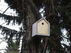 Prefab Bird Houses