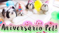 Comemorando o Aniversário das Meninas (Cadelinhas Shih Tzu) #Dogsdaloi 0...