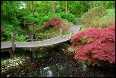 Japonske zahrady - zive obrazy vypovidajici o historii