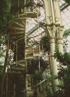 The Palmenhaus Schönbrunn is a large greenhouse in Vienna, Austria, featuring plants from around the world Stairway To Heaven, Glass House, Stairways, Botanical Gardens, Interior And Exterior, Palace Interior, Interior Garden, Future House, Beautiful Places