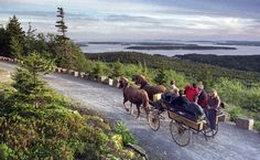 David Rockefeller Maine A carriage ride brings visitors to the summit of Day Mountain at Maine's Acadia National Park, overlooking the Cranberry Islands off shore. armstrongmywire.com