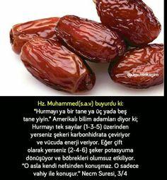 Muhammed Sav, Wtf Fun Facts, Iftar, Allah, Beef, Healthy, Food, Islamic, Google