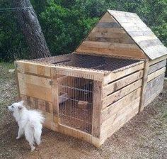 Pallet Project - Pallet Dog Kennel.  #pallets  #palletproject