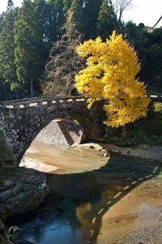 Under bridge pas reflection