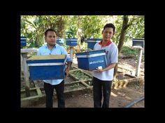 FLIFLY's beekeeping activities in Cambodia