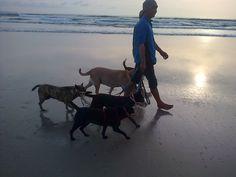 walking  with dog at kuta Beach