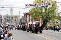 Mule Day parade in Downtown Columbia