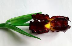 Dekorose.eu. Iris dunkelrot